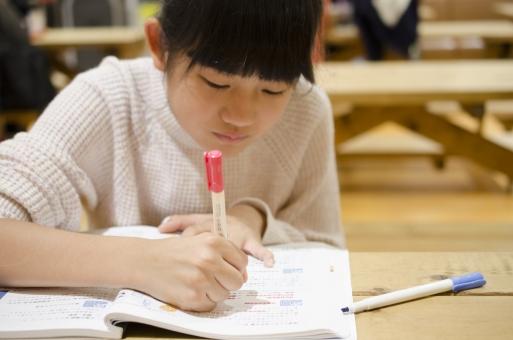 勉強は復習だけするのが効果的!復習の効果と正しいやり方